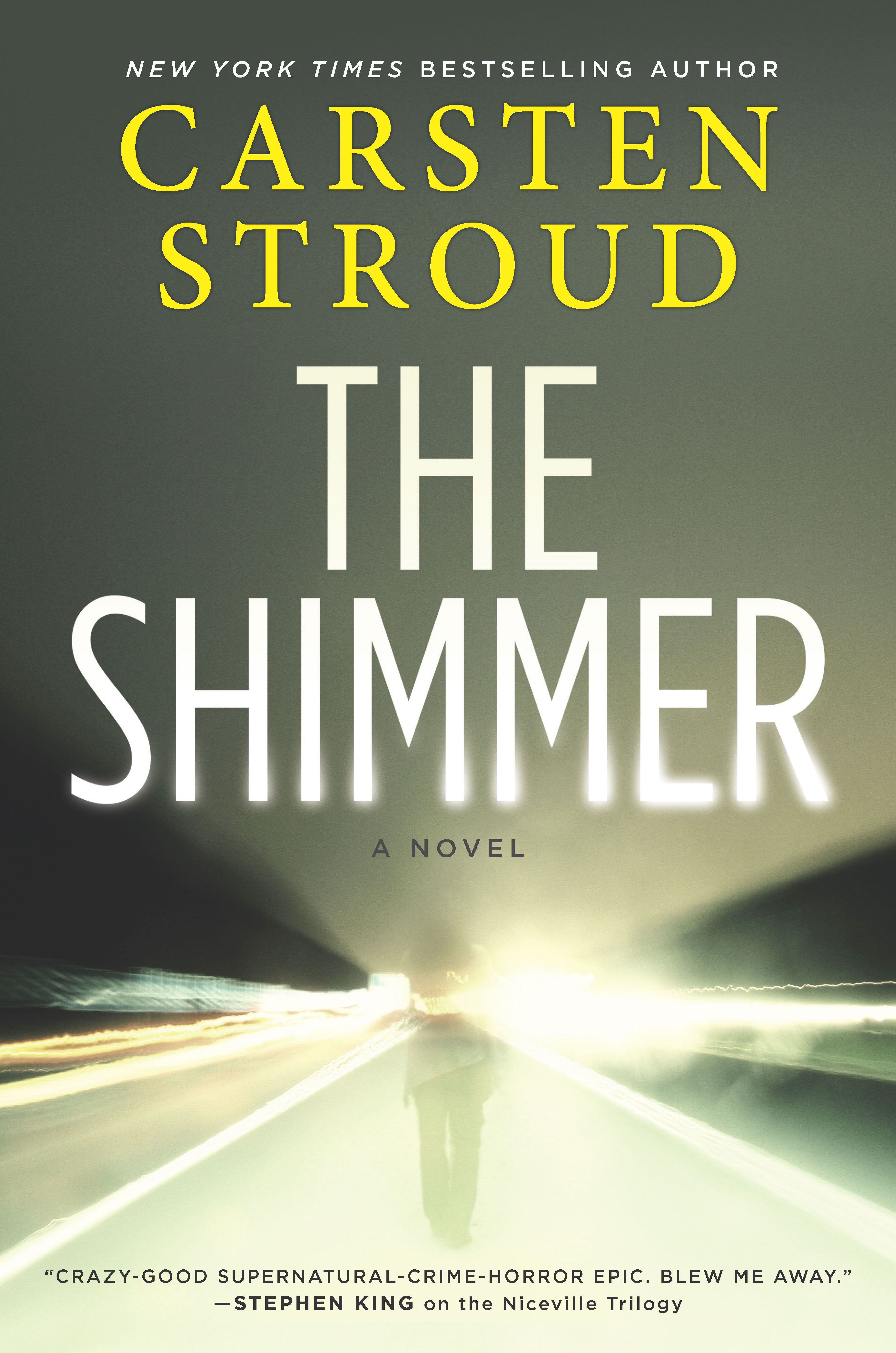 The Shimmer cover