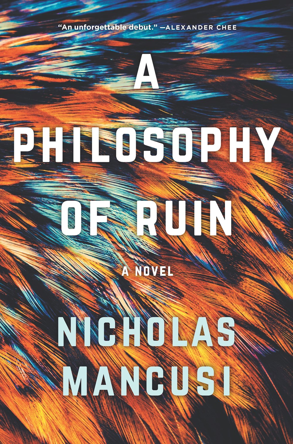A Philosophy of Ruin cover